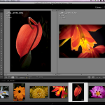 Adobe Lightroom V3